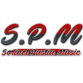 Sorinel Pustiu Music