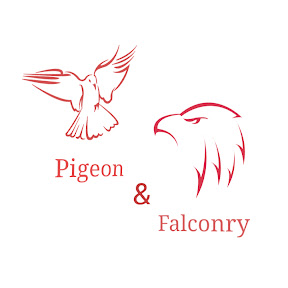 Pigeon & Falconry
