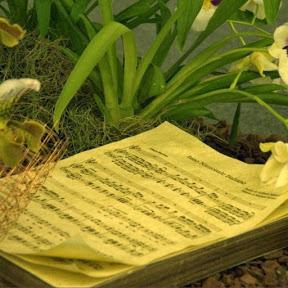 Le Note Del Tempo