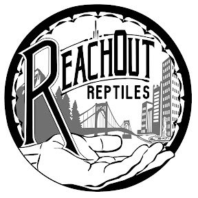Reach Out Reptiles