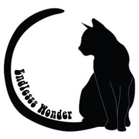 Endlesss Wonder