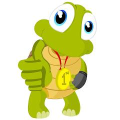 Turtle Interactive