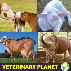 Veterinary planet