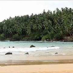 Sri Lanka - Topic