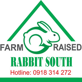 Thỏ Miền Nam - RABBIT SOUTH