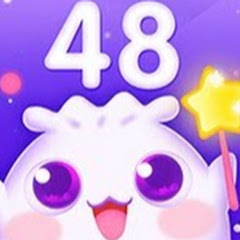 Pocket 48