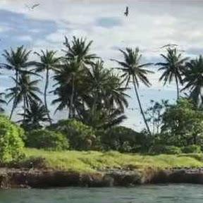 Palmyra Atoll - Topic