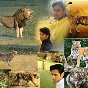 Bharat Saini Taranagar Bhalu Ram Saini Taranagar