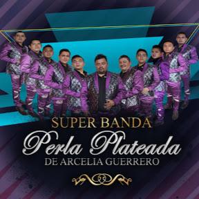 SUPER BANDA PERLA PLATEADA OFICIAL