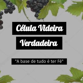 Célula Videira