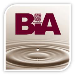 หอจดหมายเหตุพุทธทาส อินทปัญโญ -BIA-
