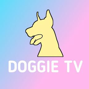 도기 TV / Doggie TV