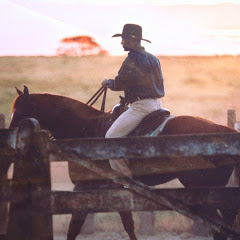HORSE- COACH