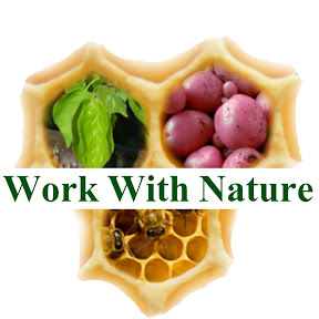 Work With Nature - How to Grow Food!
