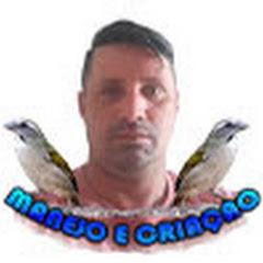 DINEY MANEJO E CRIAÇÃO