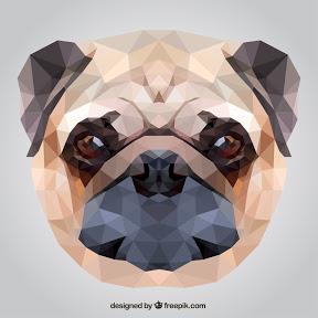 Todo Perros