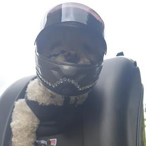 Motorbike Milly