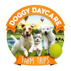 Doggy Daycare Farm Trips