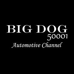 Big Dog50001 Automotive