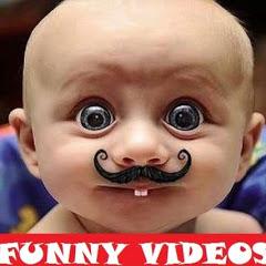 FUNNY VIDEOS & POPULAR VIDEOS
