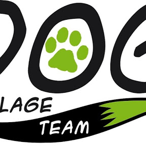 DOG VILLAGE Team