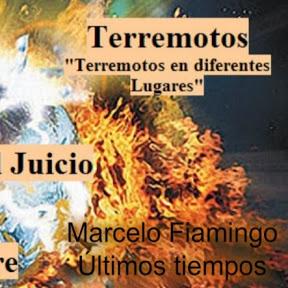 Marcelo Fiamingo Últimos Tiempos