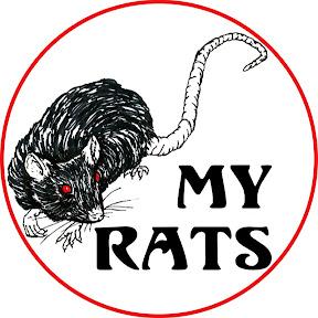 Rat Rat