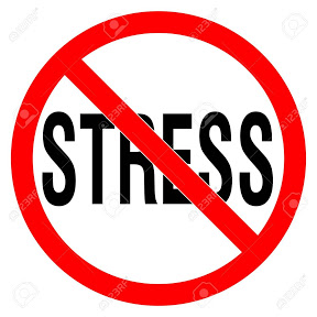 No Stress TV