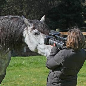 EquineVideoProd