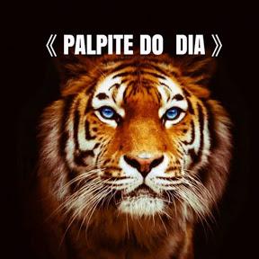 PALPITE DO DIA