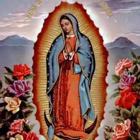 La Virgen de Guadalupe Nos Cuida