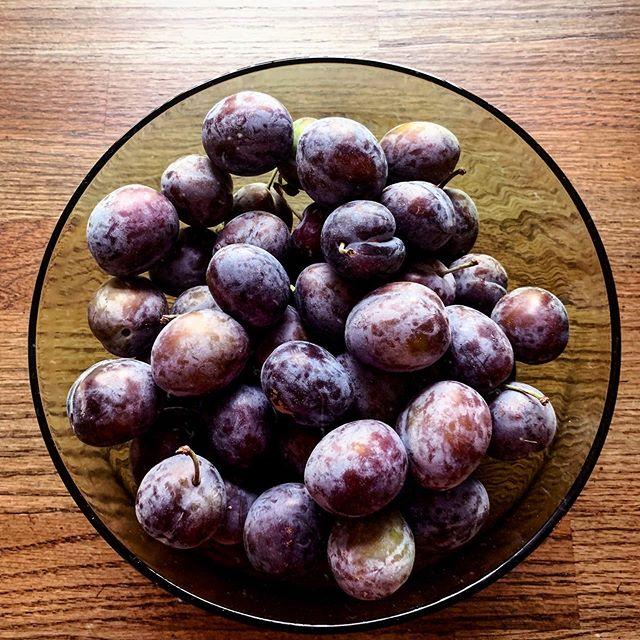 Fresh plums from Mama Jan's garden. ❤️