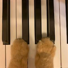 ピアノとイタリア暮らし