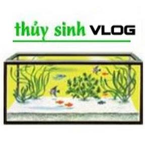 Thủy Sinh Vlog