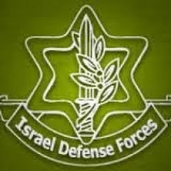 Pro Israel Defense Force