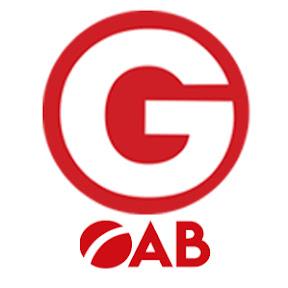 Gran Cursos OAB