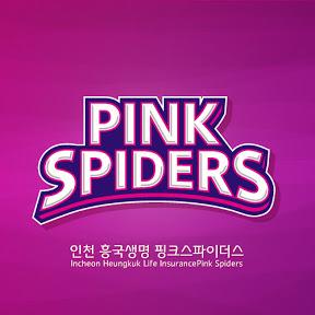 흥국생명배구단PINK SPIDERS