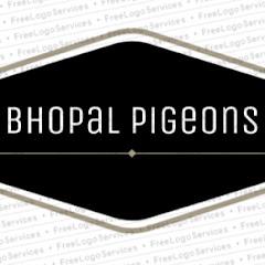 Bhopal Pigeons