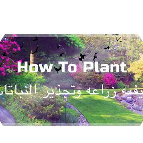How To Plant كيفيه زراعه وتجذير النباتات