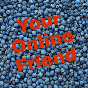 Your Online Friend