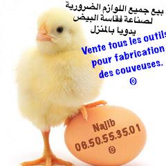 طريقة سهلة لصناعة فقاسة البيض يدويا في المنزل بيع جميع اللوازم لصناعة فقاسة ـ تجربة مغربية ناجحة