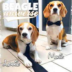 Beagle Universe