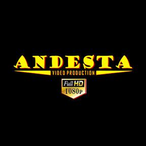 ANDESTA Video Pro