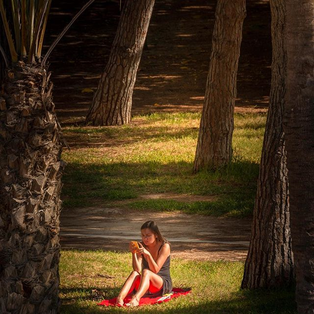Relax in the Sun 🌴🌴 #enjoylife #relaxinthesun #valencia #agirloutside #outdoorshooting #palmtreelove #ilovespain #travelphotography #peoplephotography #purenature #españa #sunshine #greatlight #canonphotography #lightroomedits #photoshoprobert