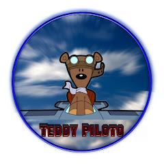 TEDDY PILOTO