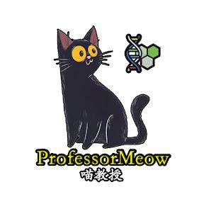 喵教授ProfessorMeow