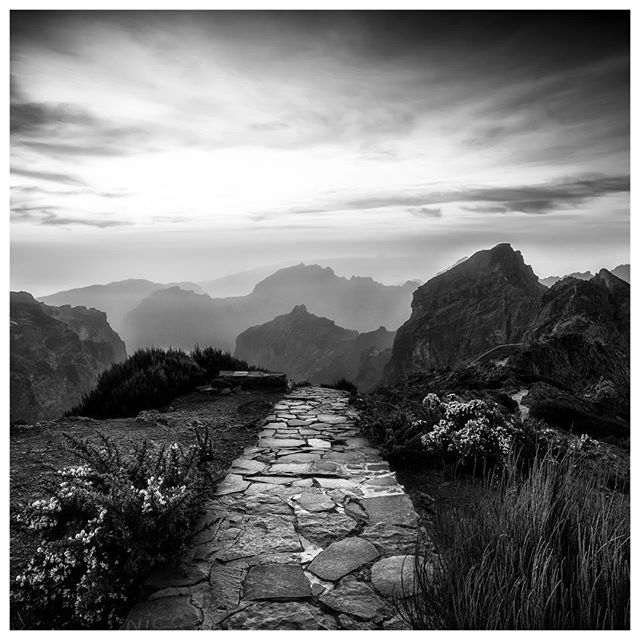 Top of the World (#Madeira)  #landscape #blackandwhite #portugal #SonyA7rIII #Zeiss Loxia 21mm