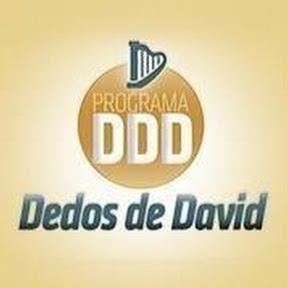 GRUPO DEDOS DE DAVID