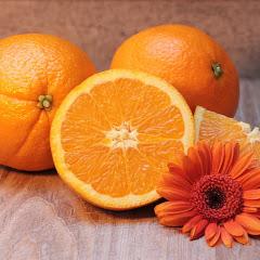 오렌지타로