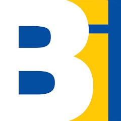 Brickinfo